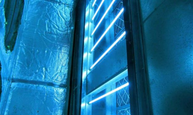 Does UV Light Kill Mold and Bacteria?