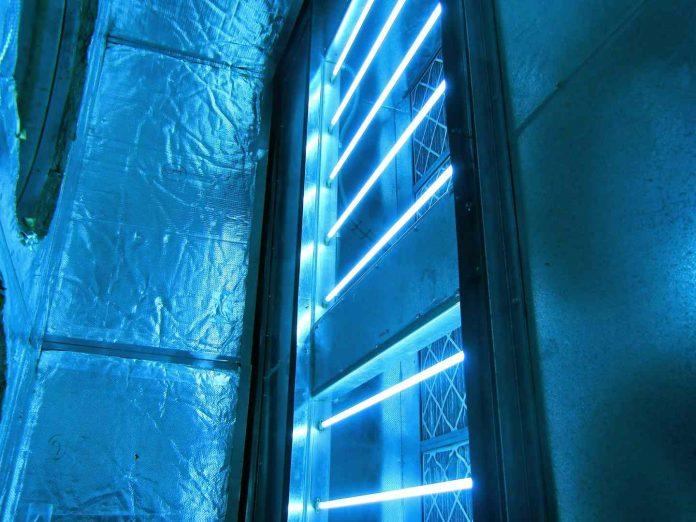 does-uv-light-kills-mold